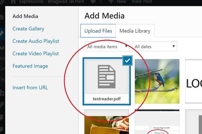 Upload PDF to WordPress
